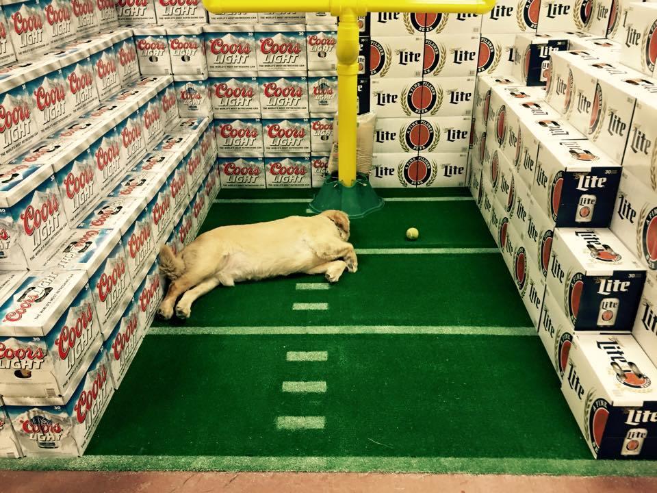 host a football party